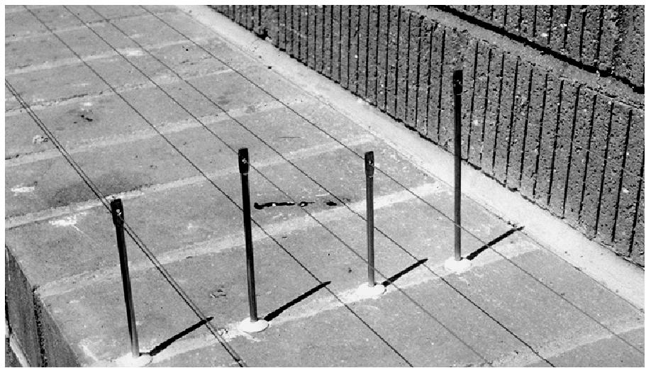 The cables in this post-and-wire grid were stretched across this wide ledge by four posts. This shows the parallel line installation. On a narrow ledge, one cable might be enough.